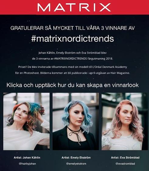 matrixnordicstrends